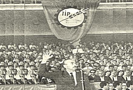 tip_1965_aybar