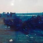 Iğdır'da Polise Hain Saldırı: 12 Şehit!