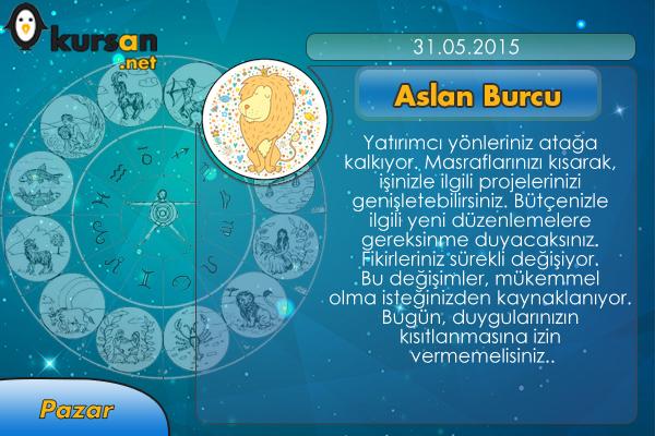 31-05-2015-aslan-burcu