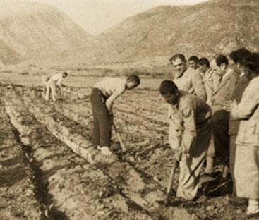 Hasan Âli Yücel, uygulamalı tarım dersini denetliyor.